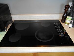 Electric Countertop Range