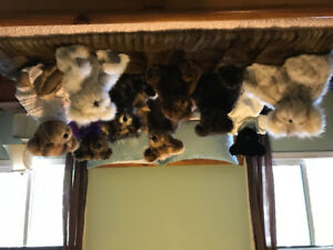 Collector Fur Bears for Sale