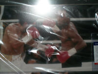 signed boxing