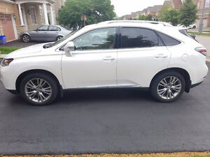 2013 Lexus RX350 SUV - Excellent Condition! LOW KM's - 47k ONLY