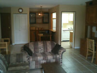 Fully Furnished 2 bedroom 2 bathroom across from KLO campus