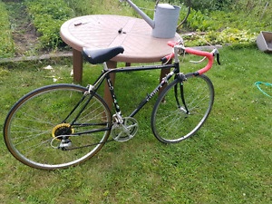 Fiori road bike