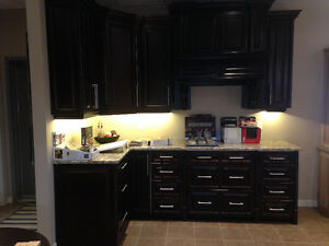 Beautiful Raised Panel Maple Kitchen with Granite Countertop
