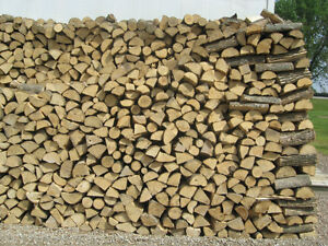 FIREWOOD FOR SALE - WELL-SEASONED - READY TO USE London Ontario image 2