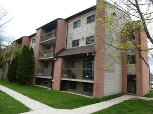 STUDENT RENTAL- newly reno 3 bed, LOW PRICE!!, *Sept.Start date*