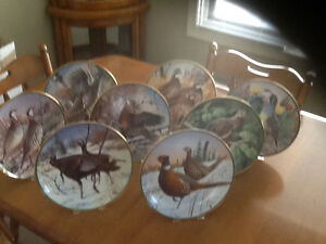 North American Game Bird Game Bird Collection