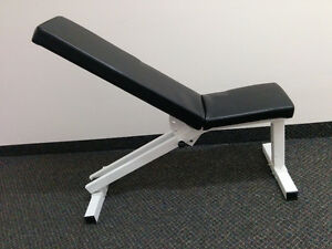 Adjustable Weight Bench and dumbells