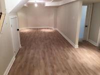 Laminate, hardwood, allure carpet, vinyl installation / painting