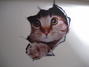 3D Cat Wall/Floor Decal