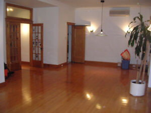 3br GREAT BRIGHT SPACIOUS CENTRAL APARTMENT MCGILL GHETTO