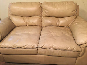 one Couch and one Sofa-Bed for sale