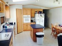 GREAT location, 3 BDRM trailer for rent ASAP! TIMBERLEA