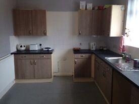 2 bed house to rent in Peterlee, no deposit DSS welcomed 07804320904
