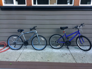 2 Bikes for $150