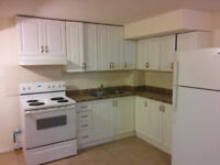Spacious 2 bedroom basement apartment with all Utilis(1 Parking)
