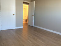 2bdm + Office  Heat/Hot Water Incl!  ALL NEW FLOORING, New Stove