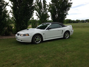 2004 Ford Mustang 40th Anniversary Convertible