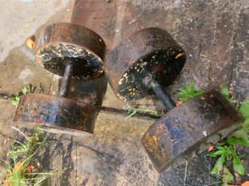 43.4kg dumbbell pair cast iron