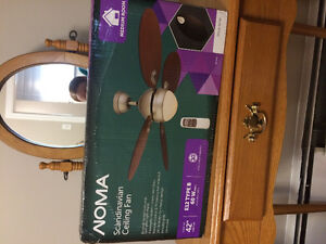 Nona Scandinavian Ceiling Fan with Remote (new)