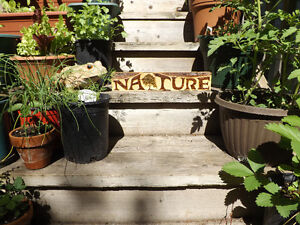 ORIGINAL AND UNIQUE WOODBURNED NATURE SIGN ON RECLAIMED WOOD Peterborough Peterborough Area image 2