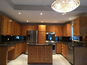 Kitchen Cabinets (wood) and Granite Countertops