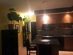 UNFURNISHED BEDROOM AVAILABLE FOR GAY ROOMMATE IN FURNISHED 2 BR