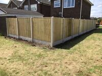 New Flat Top Timber Feather Edge Fence Panels * Close Board