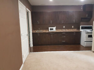 A Specious and Attractive Basement Suite for Rental.