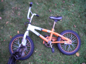 kids Norco bike