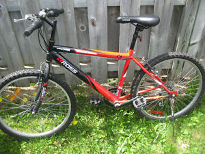 """Kid's bike, 24"""" wheels"""