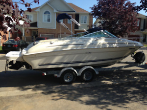 2001 215 Sea Ray Express Cruiser