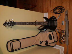 6 String Ibanez Bass