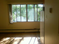 May FREE! Rent TODAY! Bachelor BASEMENT suite on Whyte ave.