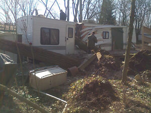 PROFESSIONAL TREE SERVICES/PRUNING/FALL YARD CLEANUP Kitchener / Waterloo Kitchener Area image 2