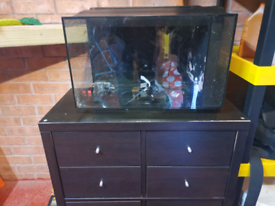 Nano marine fish tank