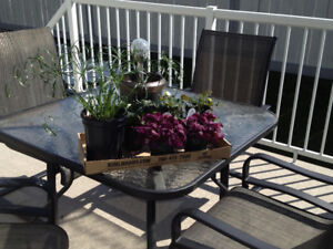 Glass topped patio table and webbed chairs