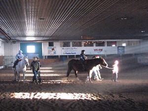 Kids beginner riding lessons Strathcona County Edmonton Area image 2