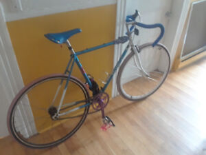Coloured Fixed/single gear 52 cm