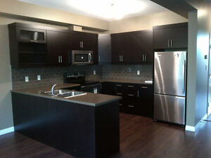 Luxury Masonville 4 Bedroom Rental Near UWO / Amenities