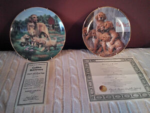 Golden Retriever Plates Belleville Belleville Area image 1