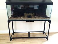 4ft fish tank / 3D background & stand £150 possible delivery