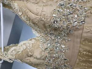 Gold wedding or special occasion gown.