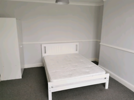 Filton - Large room to rent