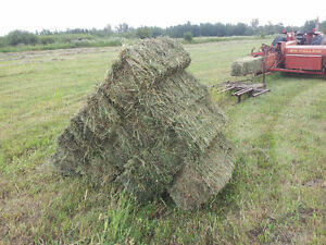 Selling the Ranch everything must go farm equipment etc.