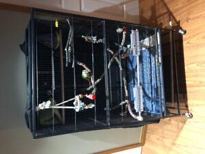 Birds/Cage/Accessories