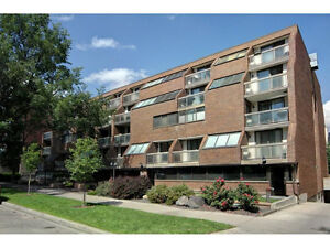 Lower Mount Royal beautiful two storey loft condo for sale.