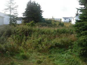 Land for Sale in Catalina with water vew St. John's Newfoundland image 1