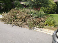 YARD WASTE/TREE BRANCHES/LEAVES/REMOVAL SERVICE