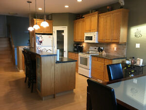 Kitchen cabinets - includes sink and countertops