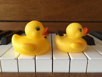 Piano and Clarinet Lessons